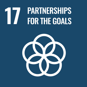 17: Partnerships for the Goals